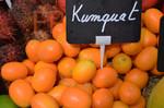 Kumquat - agrume